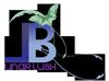 Lunarblush Company Logo