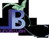 Lunarblush Logo - Bottom